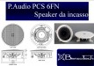 P.Audio PCS 6FN